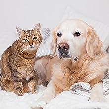 Pour tous les chiens & chats