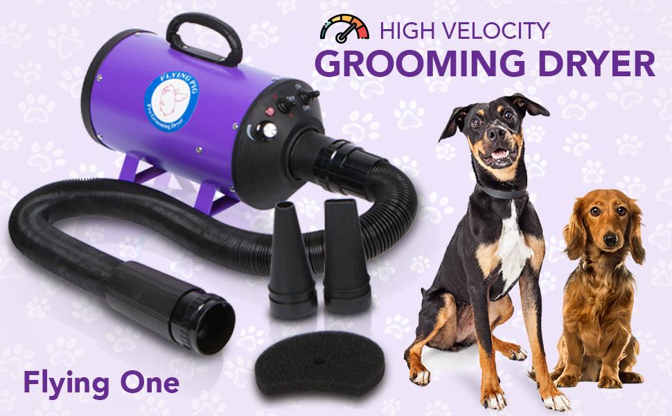 Flying Pig Grooming Dog Cat Pet High Velocity Dryer