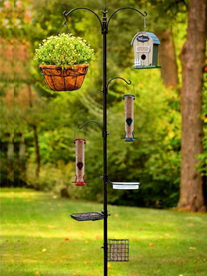 Ashman Deluxe Premium Bird Feeding Station
