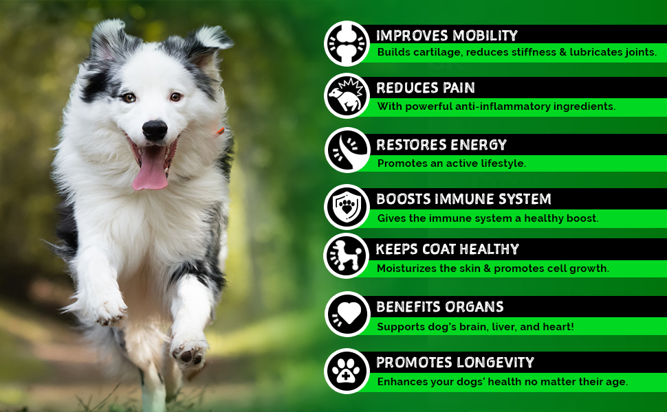 hemp dog treats chews chew glucosamine for dogs hip joint senior mobility support supplement wildpaw