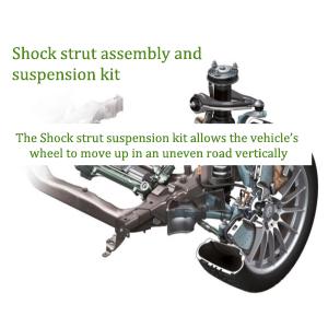 strut assembly