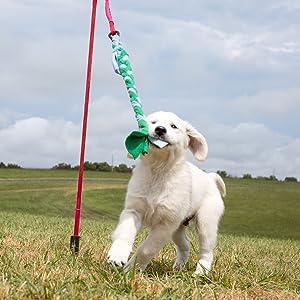 small dog tug toy