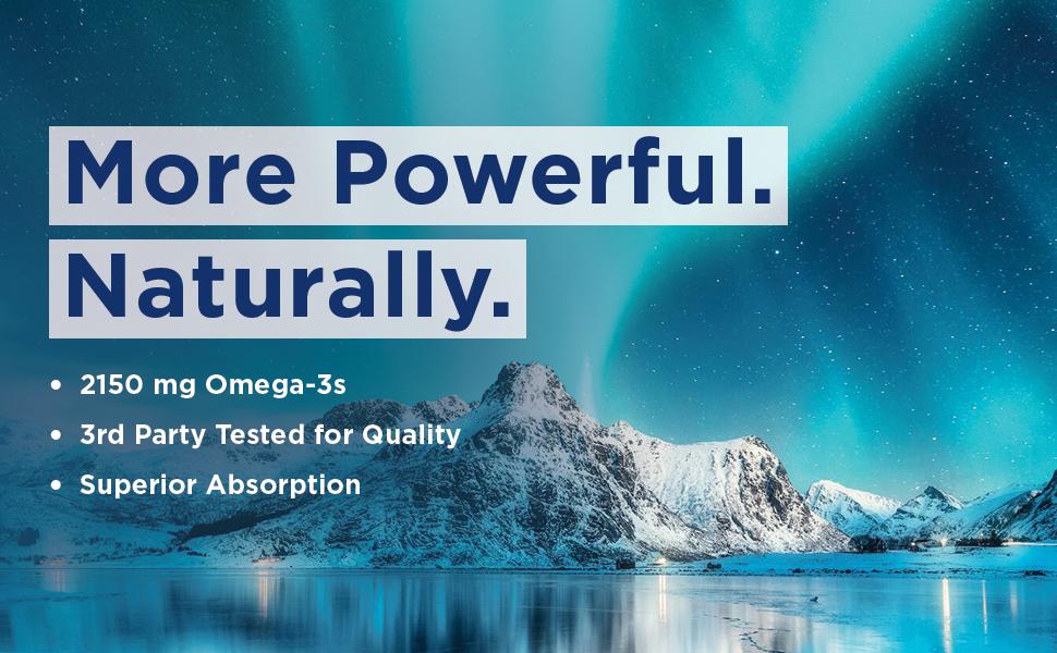 Ultimate Omega 2X 60ct 2