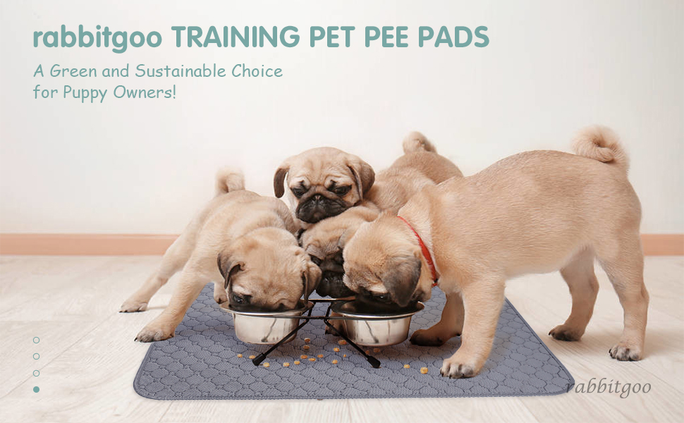 Washable Pee Pads for Dogs