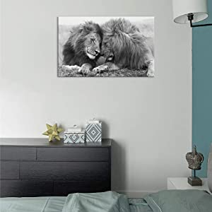 SLEEPING LION CANVAS PICTURE PRINT WALL ART HOME DECOR FREE FAST DELIVERY