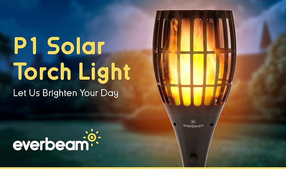 P1 Solar Torch Light