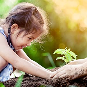 trees, give back, one tree planted, plant a tree, sustainability, earth conscious