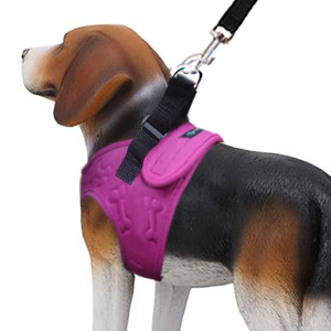 No pull small dog harness metric usa comfort fit