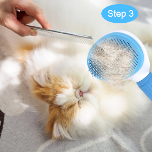 Step 3: Remove the hair from the brush.