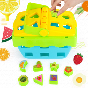 Put the Fruit Recognition Blocks in