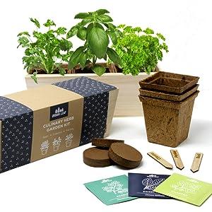 Amazon.com : Herb Garden Starter Kit | Free Web app Guide ...