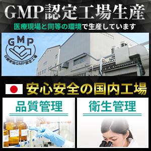 GMP 国内生産