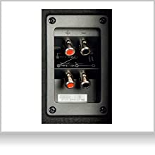 EBR-M8DX: Bassreflex Basskiste mit praktischen Push Terminals für schllen Einbau