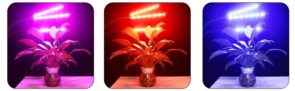 Red/Blue Grow Light