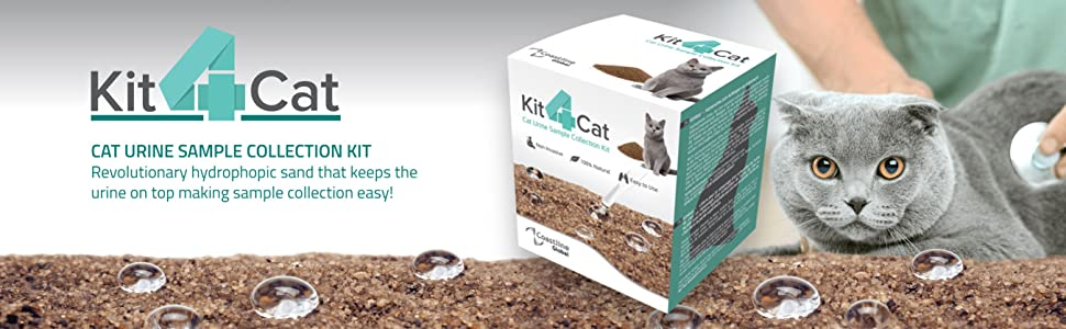 kit4cat, urine sample collection, cat urine, hydrophobic sand, litter