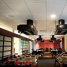 Genesis Ceiling Tiles Restaurants