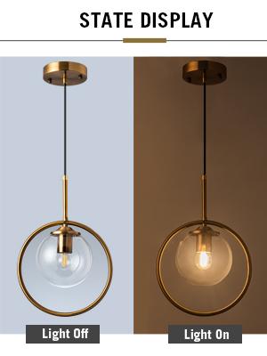 Modern 1-Light Chandeliers