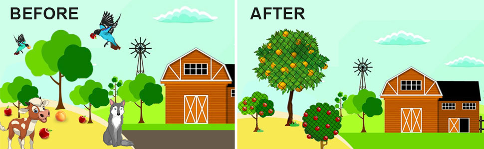 protect fruit trees