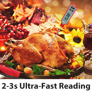 ultra fast reading meat thermometer