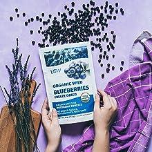 blueberries bilberries Nordic organic healthy snack