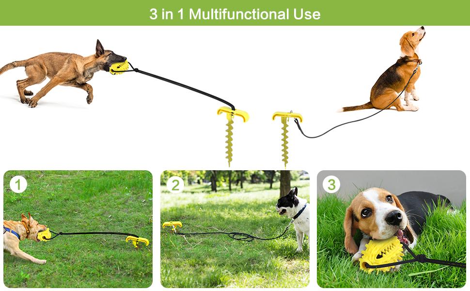 dog yard leash
