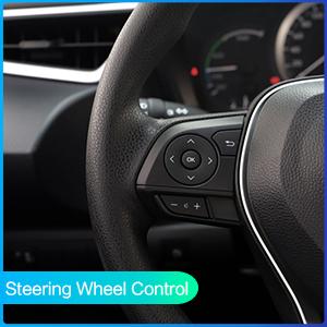 Steering Wheel Control