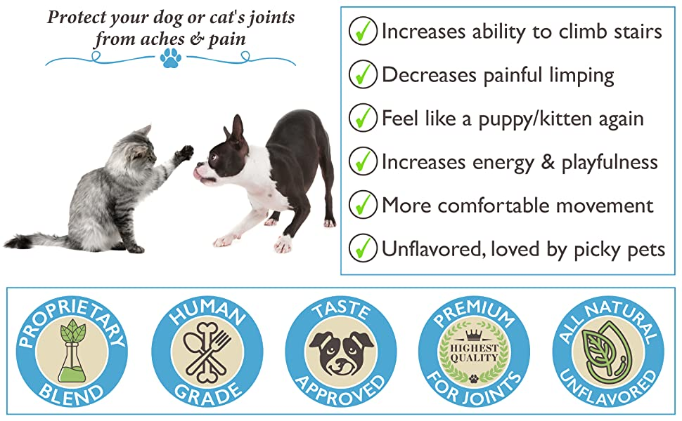 Best Paw Nutrition Dog and Cat Dream Glucosamine Liquid Joint Pain Relief