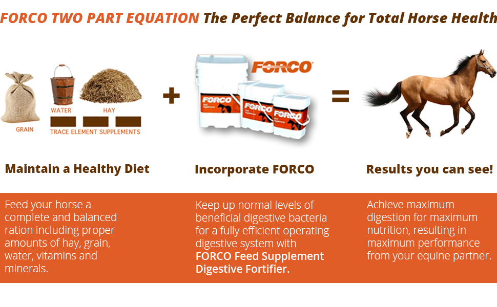 succeed horse supplement, forco digestive fortifier horses, turmeric horse supplement, forco pellets