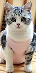 猫術後服ピンク