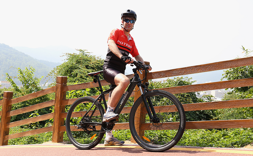 750W electric bicycle