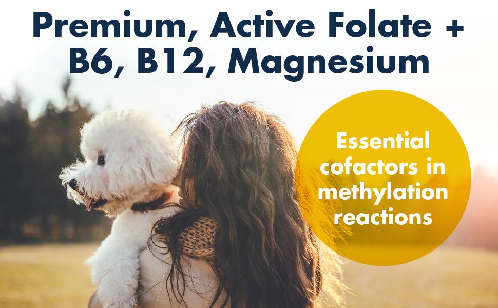 Premium Folate with Cofactors