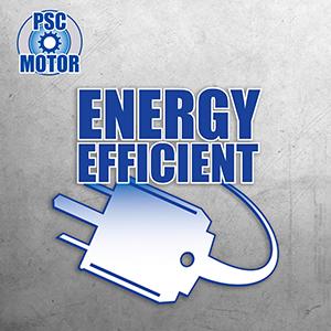 energy-efficient pump, lower electric bills, PSC motor, dual ball bearings, SP sump pump