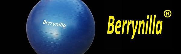 Exercise Ball Berrynilla