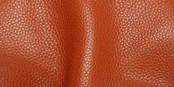 Acknowledge of Genuine Leather