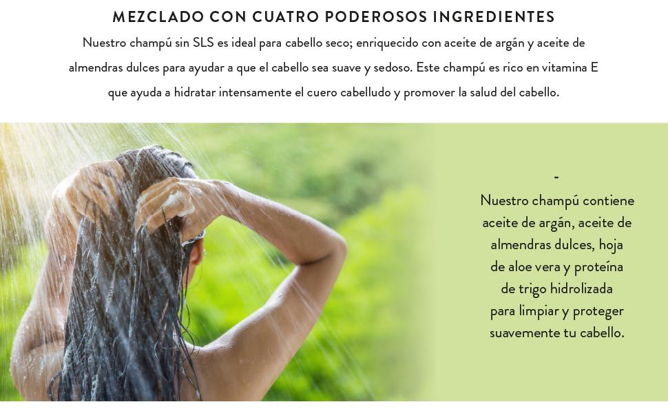Champú Nourish & Shine 200 ml - Enriquecido con hoja de aloe vera - Champú sin SLS con aceite de argán y almendras - Ideal para cabello normal o seco ...