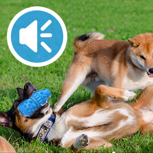 SQUEAKY-LOVING TOY FOR DOGS: Squeaker dog toy is designed with built-in squeaker that creats fun