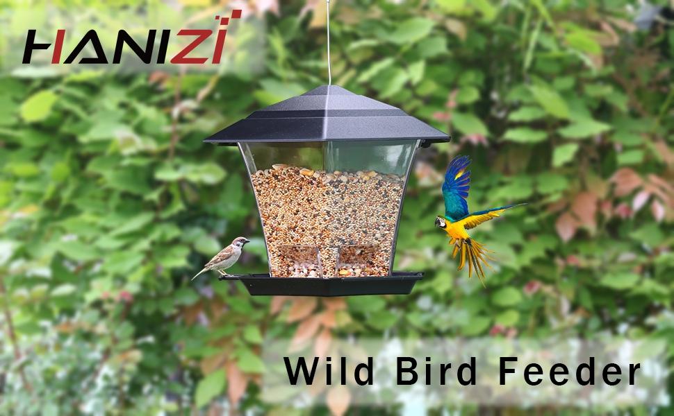 Hanging Bird Feeder for Outside