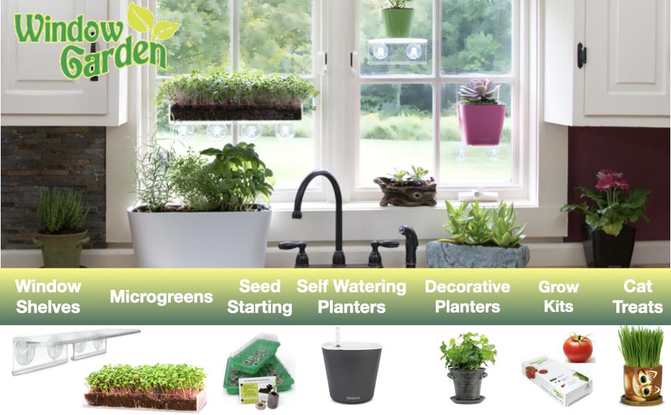 Grow your Microgreens in the Sun