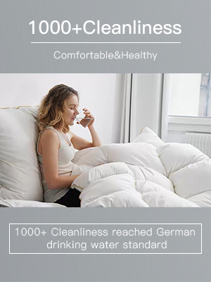 1000+ cleanliness