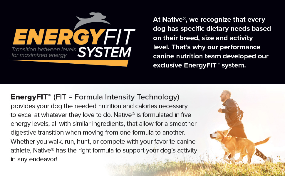 natiove dog food pet energyfit