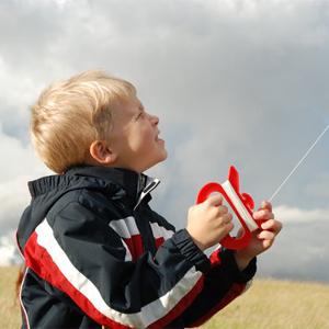 Kites for the beach