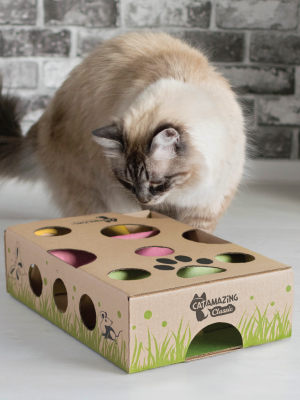 Cat Amazing veterinarian recommended weight loss overweight cat puzzle feeder dispenser for cats