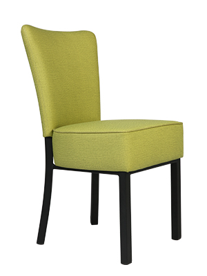 LUCKYERMORE Comfy Side Chairs