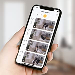 Pet camera video history on the phone app