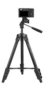 RONSHIN ConsumerElectronics PULUZ 1//4in C-Ring Stainless Steel Camera Tripod Screws for DSLR Camera Tripod Quick Release Plate Photo Studio AcCDssories
