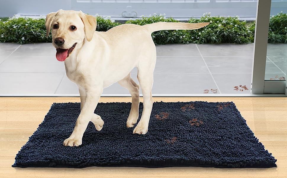 CGSignLab 5-Pack No Dog Pooping Basic Navy Window Cling 30x20