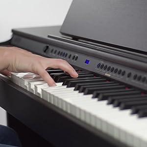 Digital Piano Hammer Action