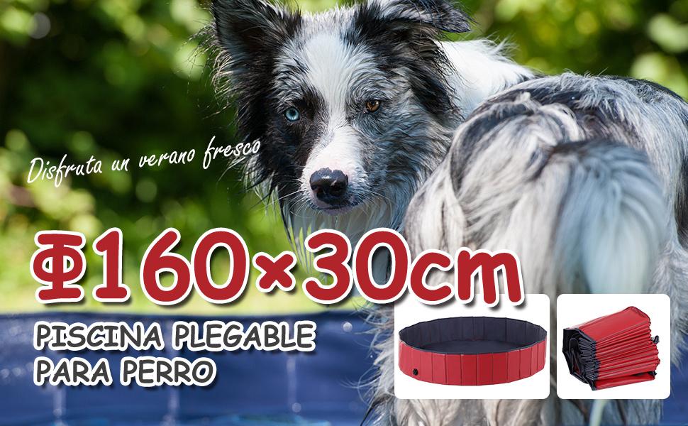 Piscina para Perros Plegable Diametro 160cm y Altura 30cm Natacion ...