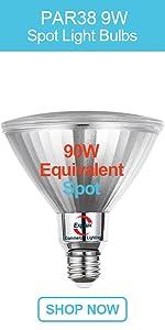 General Lighting PAR38 LED Spot Light Bulbs