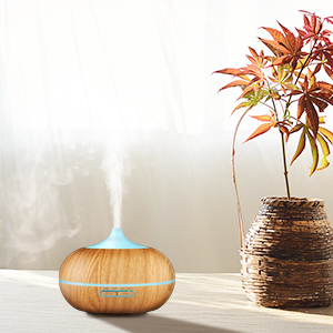 scent diffuser aromatherapy diffuser fragrance diffuser air humidifier Mist humidifier oil diffuser